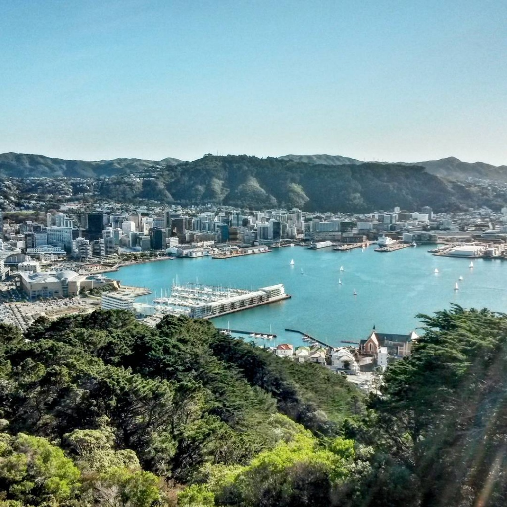 The best views are those that take a little effort... it also helps when the landscape is top notch! Wellington, New Zealand