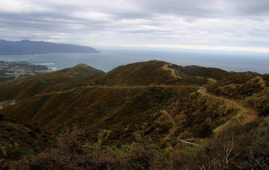 Wellington Walks: Te Kopahou Reserve Tip Track